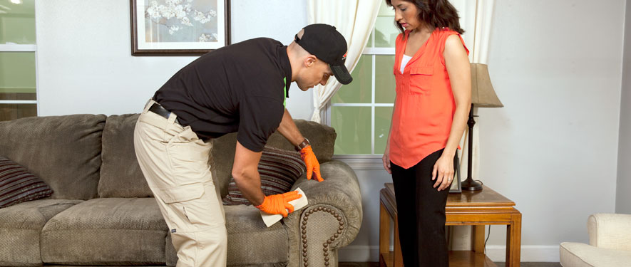Lapeer, MI carpet upholstery cleaning