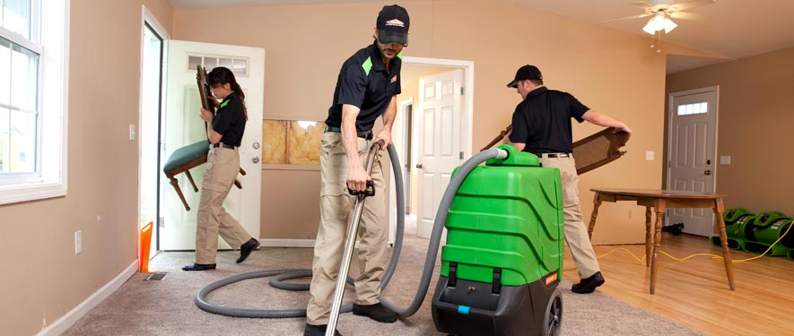 Lapeer, MI cleaning services